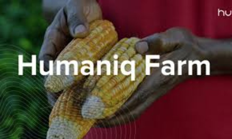 Humaniq's Hybrid Blockchain-based Mobile Application To Help Agricultural Business