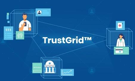 Trusted Digital identity Networks-TrustGrid